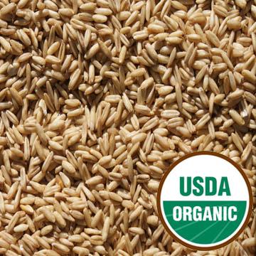 Sun Organic Farm: Organic Oat Groats